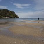 Sur la plage de Bark Bay
