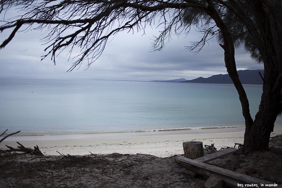 Petite terrasse avec vue sur la mer (Cook's Beach)