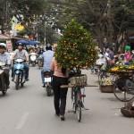 Vélo à Hanoi