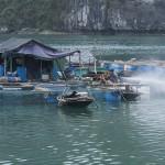 Résidence des pêcheurs de la baie