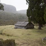 Le petit refuge de Dixon's Kingdom