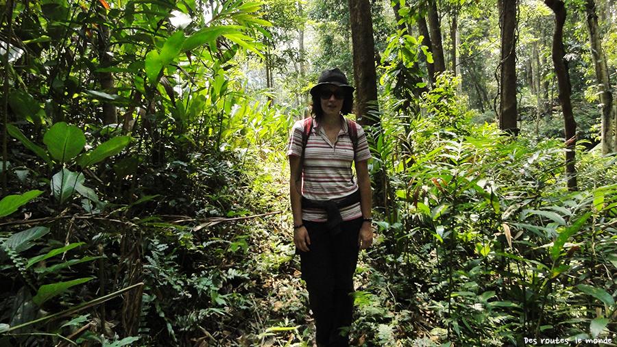 Céline dans la jungle
