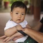 La dernière née de Green Vietnam
