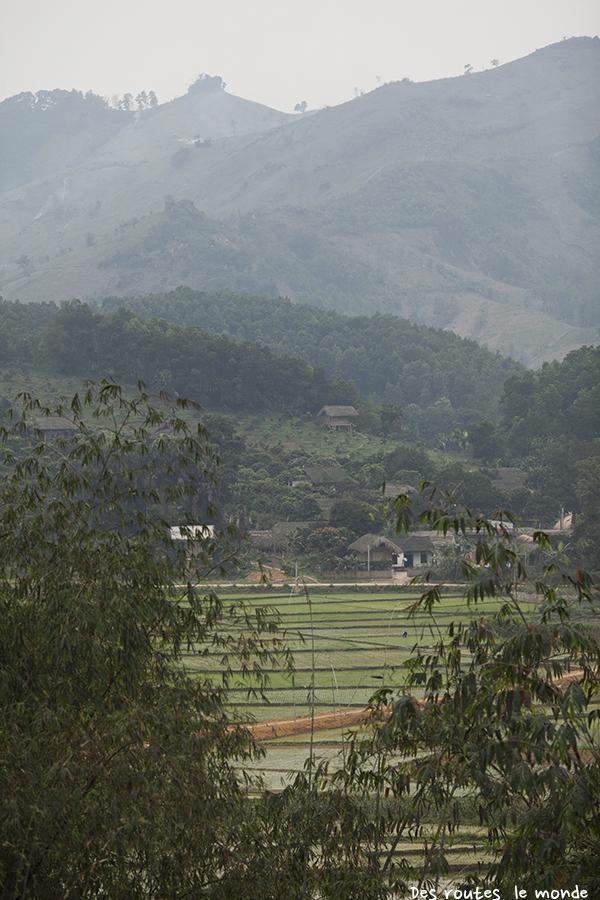 Green Vietnam au milieu de la vallée