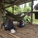 Hamac et moustiquaire