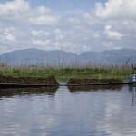 Pêcheur d'algues sur le Lac Inle
