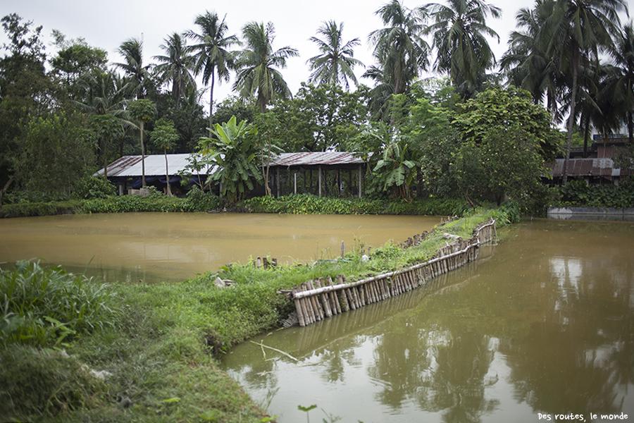 Les autres étangs