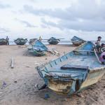 Des barques de pêcheurs