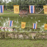 Jardin à Rajgir 2