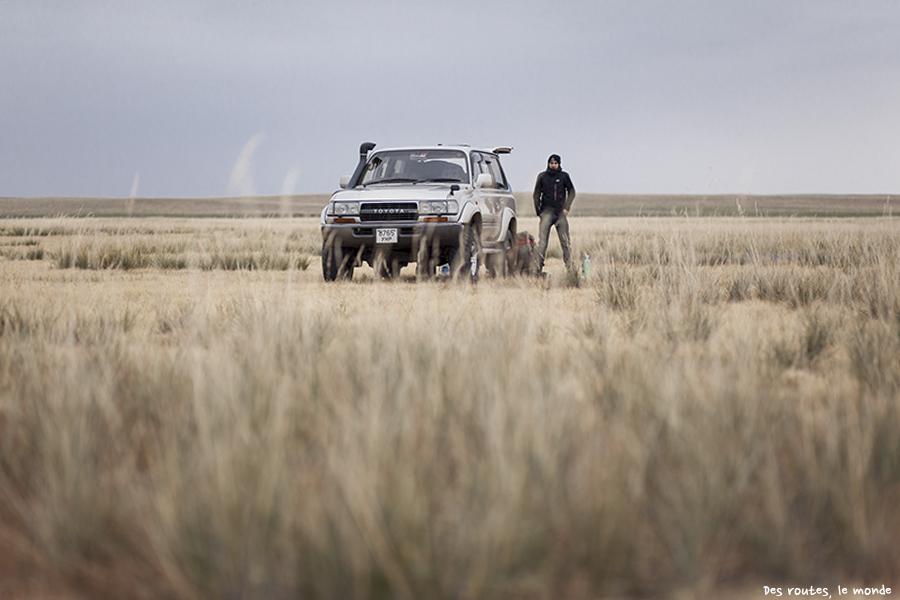 Dans la steppe