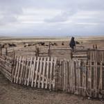 Chez une famille mongole