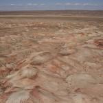 Les dunes roses