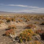 Un autre désert