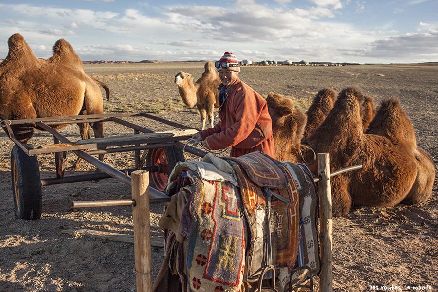 C'est l'heure du chameau